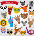Set of funny animals muzzle vector image