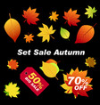autumn leaves red orange green on black vector image vector image