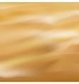 Beautiful sand background EPS10 vector image