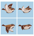 cartoon flying house sparrow male animation vector image vector image