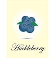 Huckleberry vector image vector image