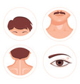 human hair thoart collabrone lips nose eye vector image vector image