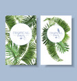 tropical leaf banners vector image vector image