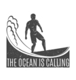 Vintage logo Men surfing on wave Surfboard Surf vector image vector image