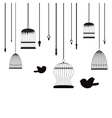 birds and birdcages vector image vector image
