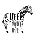 Black and white zebra concept drawing vector image vector image