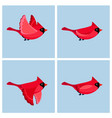 cartoon flying cardinal male animation sprite vector image vector image