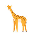 cute little baby giraffe funny smiling african vector image vector image
