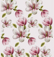 magnolia pattern watercolor flowers decor vector image vector image