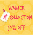 new summer collection sale vector image vector image