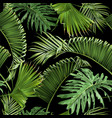tropical leaves black pattern vector image vector image