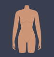 Woman mannequin torso flat style vector image vector image