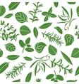 Herbes de Provence seamless pattern set vector image