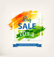 big offer sale banner vector image