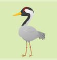 cute crane vector image vector image