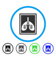 lungs x-ray photo rounded icon vector image