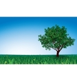 Tree on green field vector image