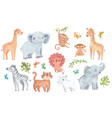 africa watercolor animals safari animal tiger vector image vector image