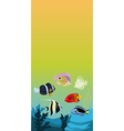 background with color fishes vector image