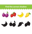 Children s educational game find correct shadow vector image vector image