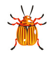 colorado potato beetle colorful cartoon character vector image vector image