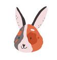 cute funny face of bunny baby rabbits head vector image vector image