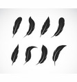 group black feather on white background easy vector image vector image