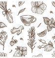 herbs sketch seamless pattern background vector image vector image