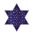 navy blue and gold jewish star vector image vector image