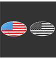 oval frame vintage american flag badge patch vector image