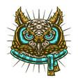 owl winter vector image