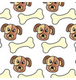 pet dog head and bone toy food pattern vector image vector image