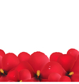 Red Hibiscus Flowers Border vector image vector image