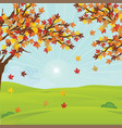 autumn landscape with fall leaves on the branches vector image