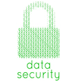 Digital Data Security Lock Text vector image vector image