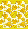 pattern with tulip poplar and linden leaves vector image