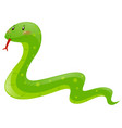 snake with green skin vector image