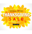 thanksgiving sale yellow maple leaves vector image