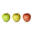 three apples isolated on white background red vector image