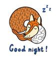 cute cartoon sleeping fox vector image