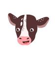 cute funny calf face head portrait of domestic vector image vector image
