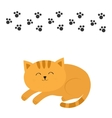 Cute lying sleeping orange cat with moustache vector image vector image