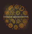 human microbiota round golden outline vector image vector image