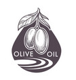 olive oil extra virgin monochrome sketch outline vector image vector image