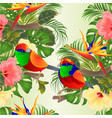 seamless texture tropical birds hibiscus vector image vector image