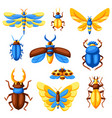 set insects stylized butterflies beetles and vector image