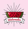 slice watermelon fruit organic vitamins emblem vector image