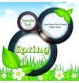 Spring info graphic vector image vector image