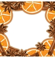 Frame - cinnamon star anise and orange vector image