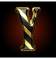 golden and black letter y vector image